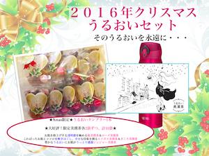 161125クリスマスうるおいセット画像mm.png