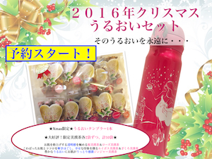 161129クリスマスうるおいセット画像1mm.jpg