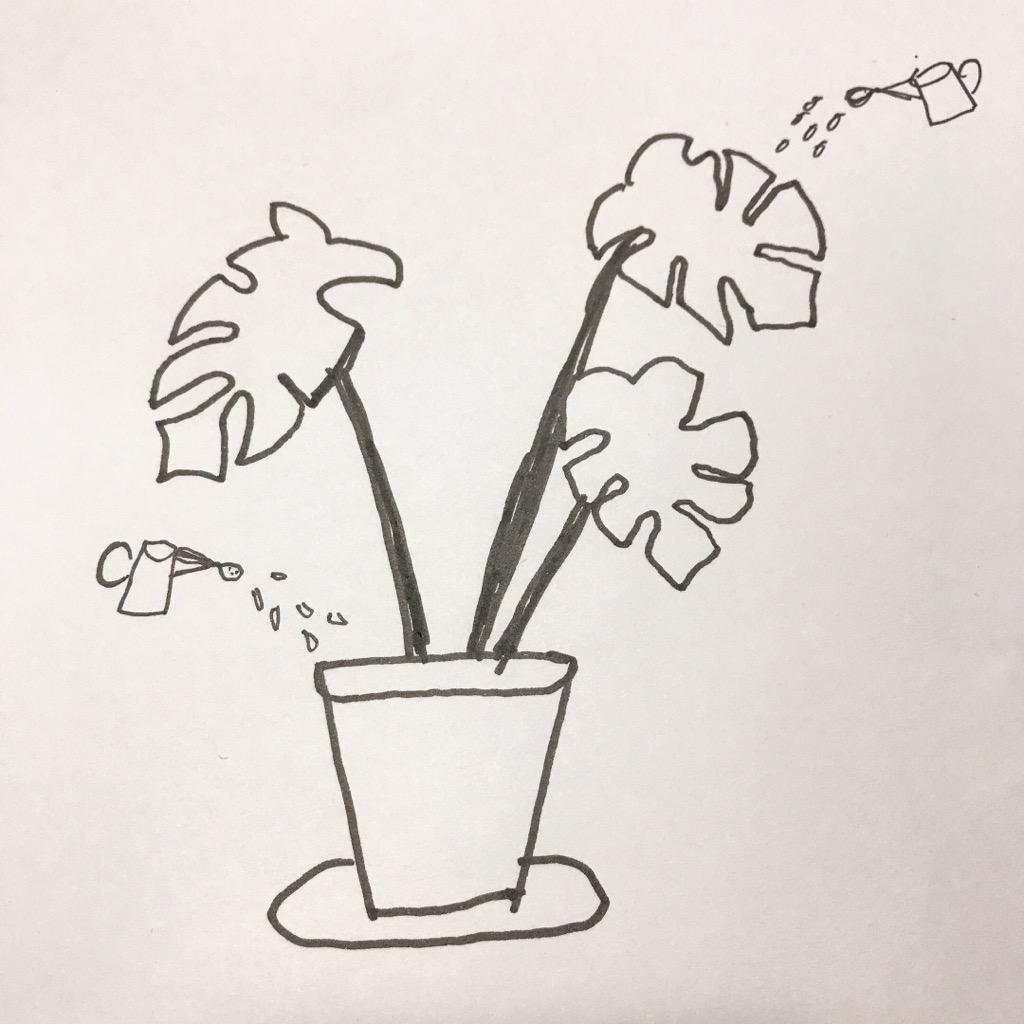 植物の水やり2